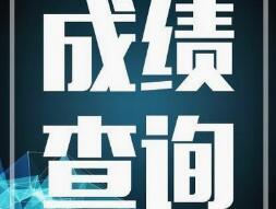 北京三级人力成绩查询