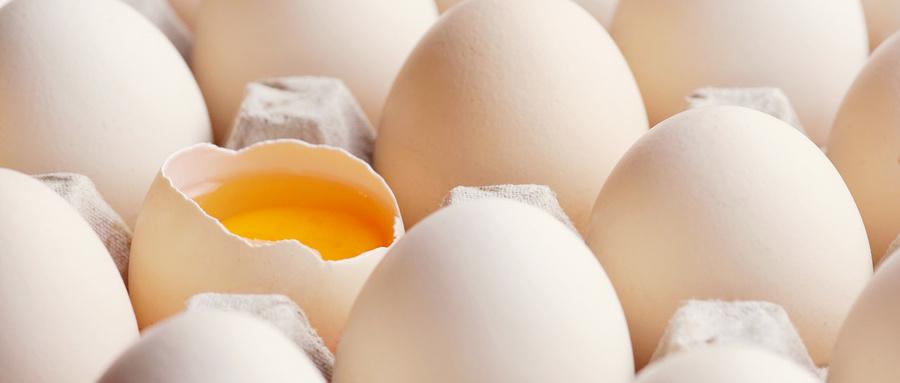 雞蛋的商品包裝設計