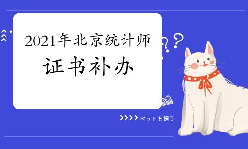 2021年北京统计师证书补办通知