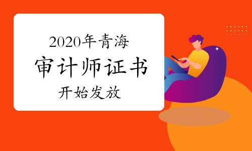 2020年青海审计师证书开始发放