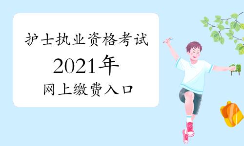 中国卫生人才网2021年护士执业资格考试报名网上缴费入口2月27日开通!