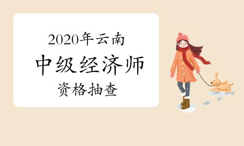 2020年云南中级经济师部分人员需进行资格抽查
