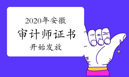 2020年安徽審計師證書2021年3月17日開始發放